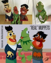Real Muppets by dhulteen