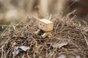 Danbo March Wallpaper II by gloeckchen