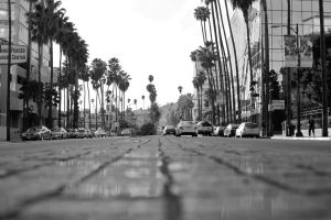 Hollywood Blvd. by xraystyle