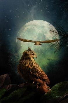 cry of the eagle owl by greenfeed