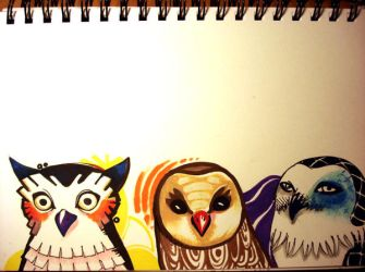 Owls by nedashi