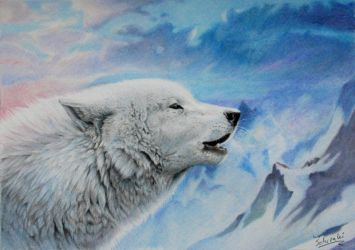 wake the white wolves by Schiraki