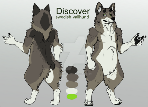Discovery simple reference by Rageaholic7898