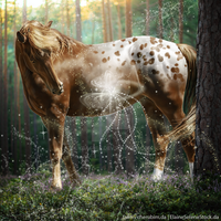 HEE Horse Avatar | Glitterbomb by Liberty-Designs