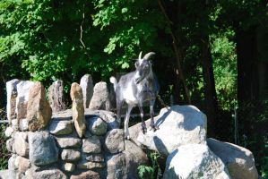 King of the Rock by oddjester