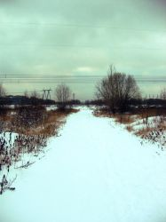 road. by bLipMaria