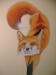 Sly Fox by NoelleMBrooks
