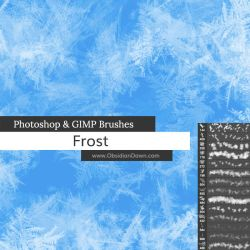 Frost Texture Photoshop and GIMP Brushes by redheadstock