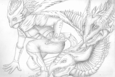 Dragons and Masks by EvolutionBreed