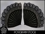 Fan Wings 002 by poserfan-stock