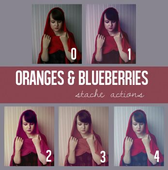 Oranges and Blueberries Action Pack by StacheActions