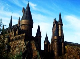 Hogwarts a History by freedomfighter12