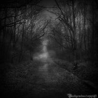 In the dark forest by CountessBloody