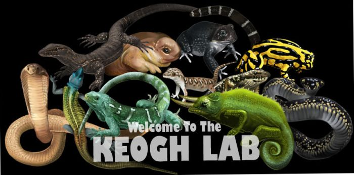 Keogh Lab Banner by muffin-wrangler