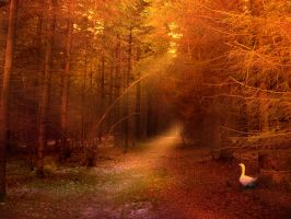 Premade Glowing Forest by Child7