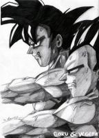 Goku and Vegeta Training by The-Ebony-Phoenix