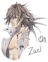 The Last Story: Zael by Arc-Ecclesia