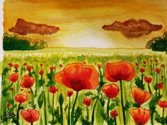 Poppy field by Eif-ka