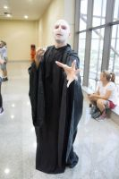 Lord Voldemort Makeup. by fontenelefx