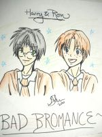 Harry and Ron - Bad BROMANCE by rhr-forever