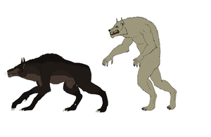 Bipedal Vs Quadrupedal werewolves Comparission by Redspets