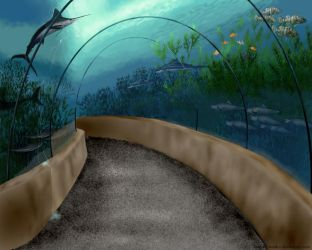 The Underwater Tunnel by AnimalArtKingdom