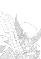 Wolverine 340 Recreation by mikebowden