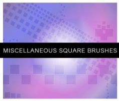 Miscellaneous Square Brushes by Annelyh