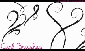 .14 - curly brushes by domino-88