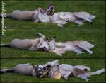 Horizontal play by Wodenswolf
