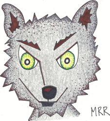 Willie The Wolf Head by meggierenee
