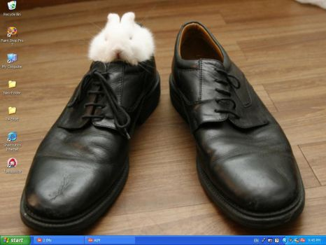 - Bunneh Shoe - by TheDibHuman