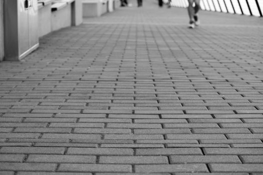 Down the Brick Road by Day329Photography