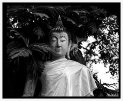 Hidden Buddha #2 by Roger-Wilco-66