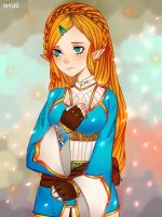 BoTW- The new princess! by M4LoZ
