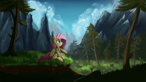 Quiet forest by Ailynd