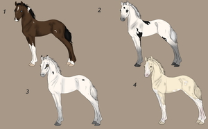 Foal Auction 1 Left (4) by NorthernMyth