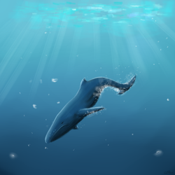 Whale and Ocean by Katrada