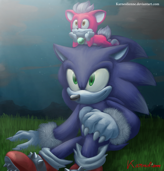 Sonic and Chip looking the moon by Karneolienne