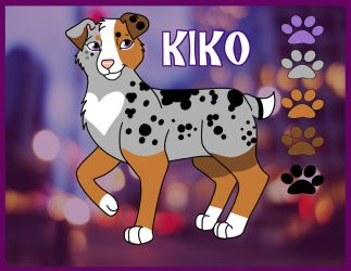 Kiko Reference Sheet by Carolina22