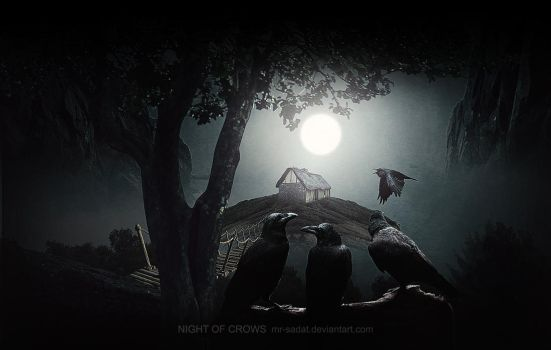 NiGhT-Of-cRoWs by Mr-Sadat
