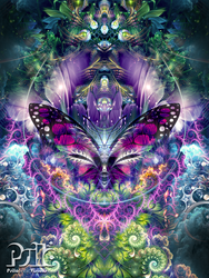 Emergence by psilotericvisions