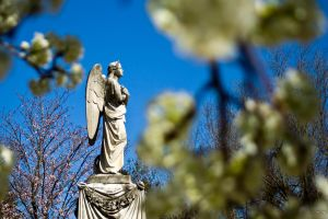 Angel Wreathed in Flowers by robertllynch