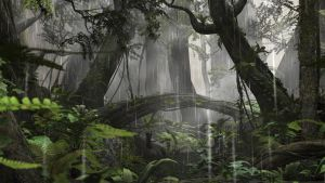 Rain Forest Stock by vatorx