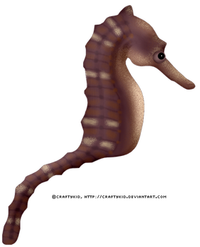 Sea Horse 2 - Brown by Craftykid