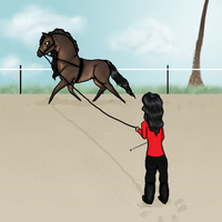 Training: Dressage Collection by BlackOakEstates