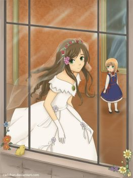 APH: The wedding dress by carichan