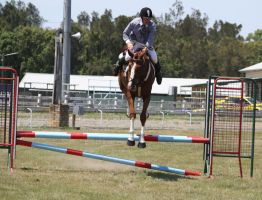 STOCK Showjumping 416 by aussiegal7
