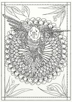 Page 4 of Australian Birds Adult Coloring Book by LorraineKelly