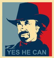 yes he can chuck norris by zoking16